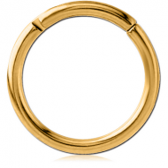 GOLD PVD COATED TITANIUM HINGED SEGMENT RING PIERCING